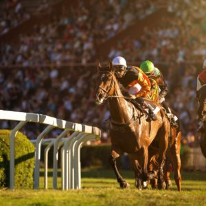 Royal Ascot Queen Anne Enclosure with Fine Dining Experience and Rolls-Royce Phantom Chauffeur for Two